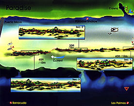 Paradise map Cozumel