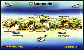 Barracuda map Playa del Carmen