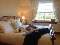 Luxury Irish homestay accommodation and delicious homemade meals.