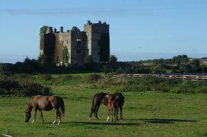 Loughmore Castle