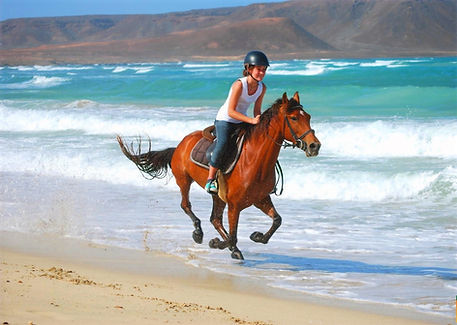 Horse%2520Riding%2520at%2520the%2520Kite