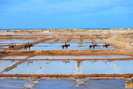 horse riding at the salt mines in Sal island Cape Verde