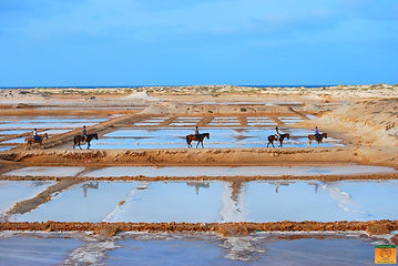 Horse Riding at the Salt Flats