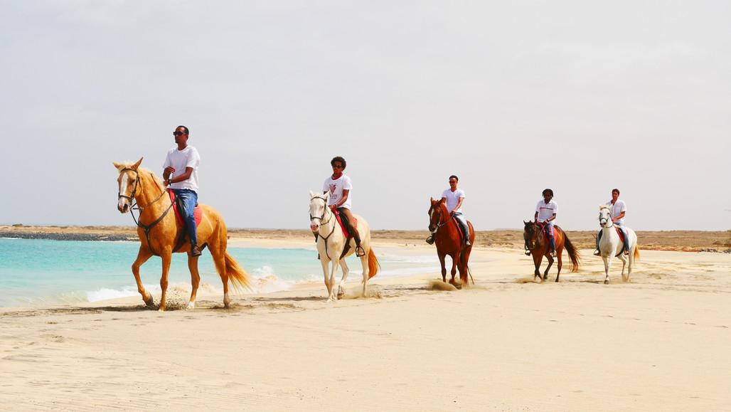 Horse Riding in Cape Verde - Sal Island