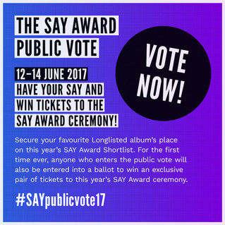 Public Vote Open for SayAward 17.