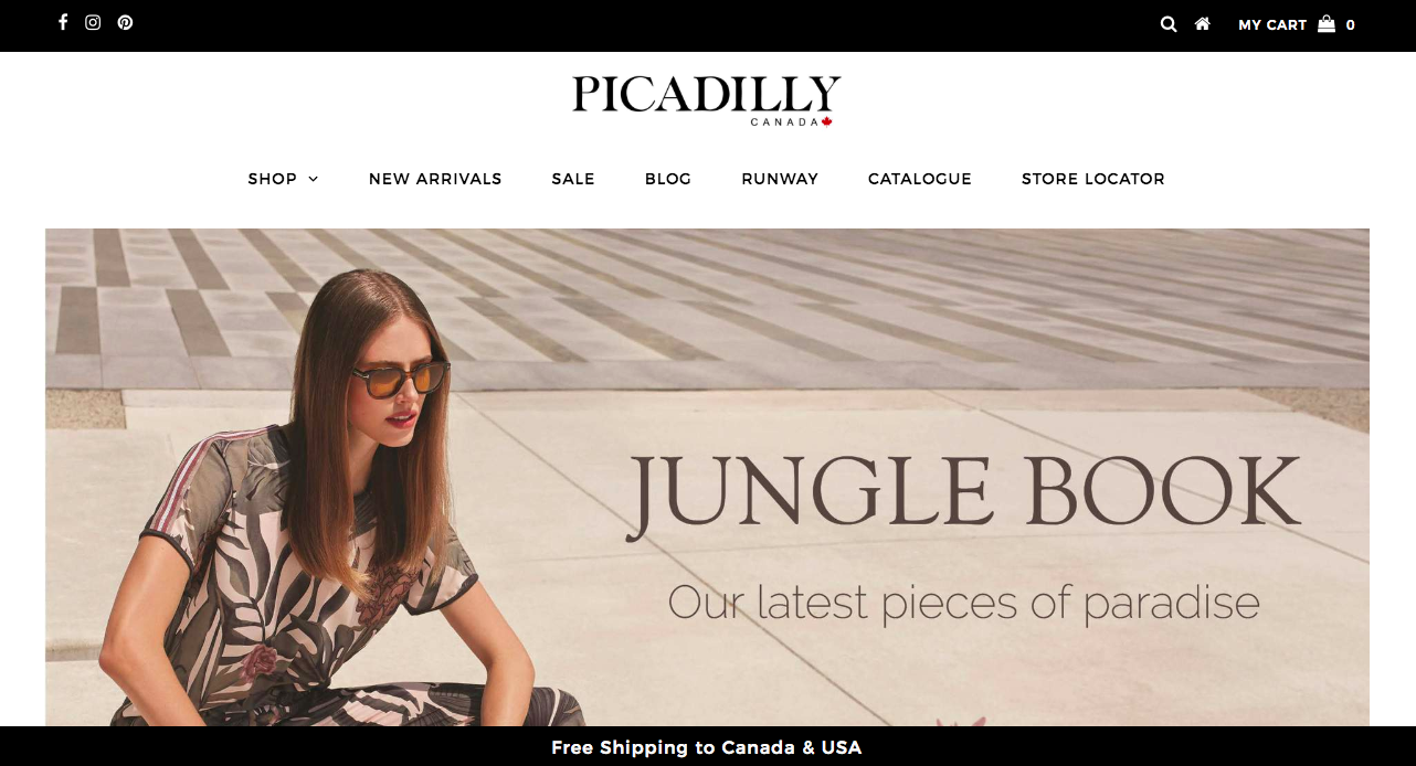 Picadilly Website Design