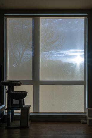 Window_10.jpg
