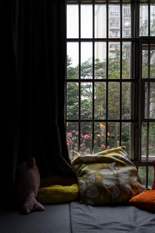 Window_33.jpg