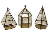 Gold Terrariums