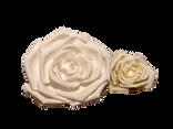 White Foam Flowers