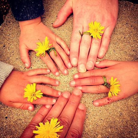 family-hand-1636615_960_720_edited.jpg