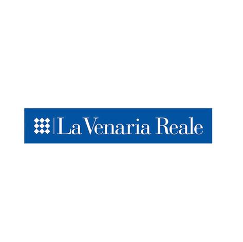 Reggia Venaria V1.jpg