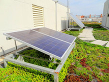 wwf-green-hq-solar-panels.jpg