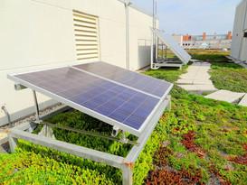 wwf-green-hq-solar-panels.jpg