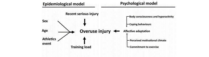 The psychological factor 'self-blame' predicts overuse injury among top-level Swedish track and field athletes: a 12-month cohort study