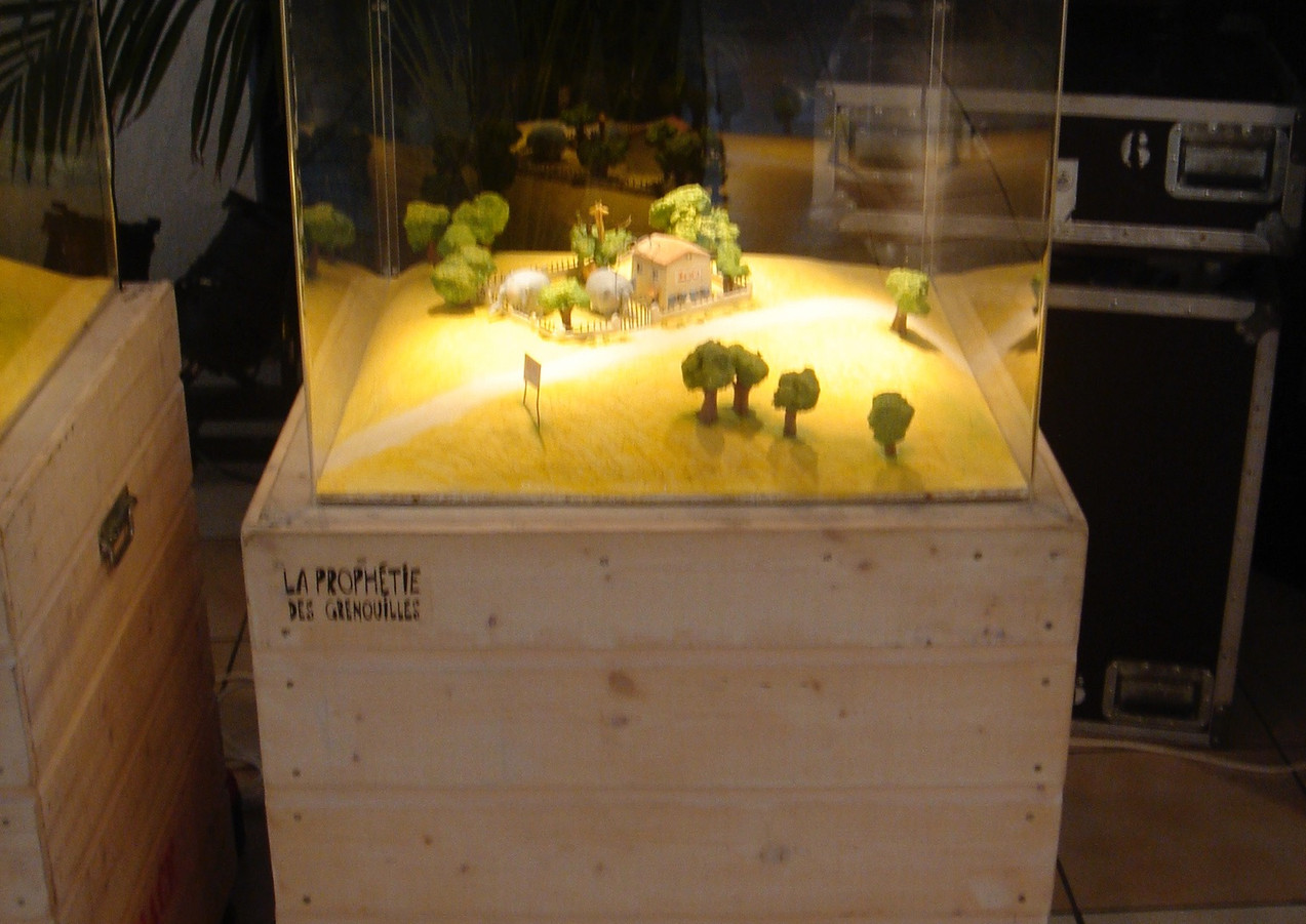 vitrines-grenouilles.jpg