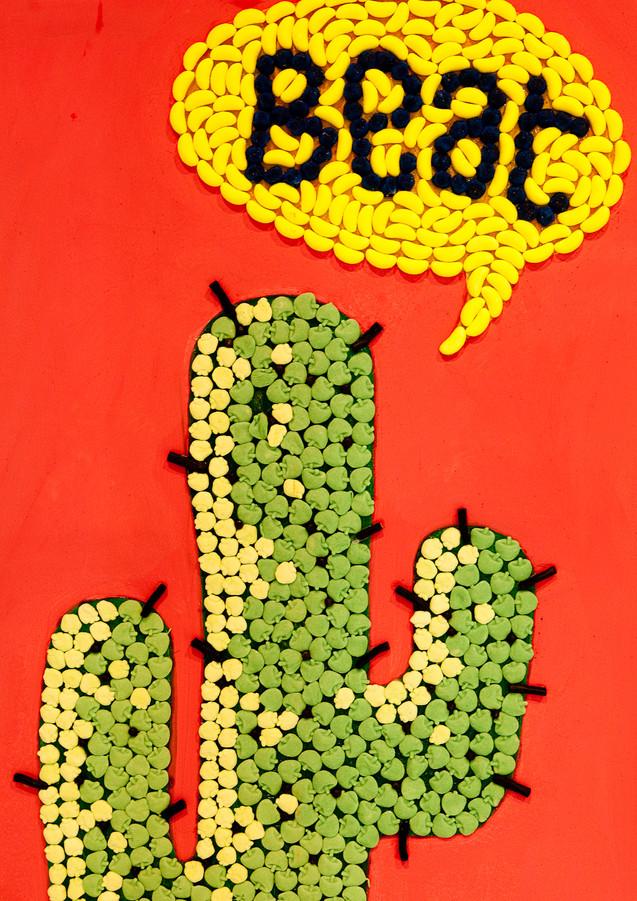 cactus-pierre-blanc.jpg