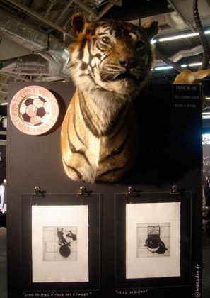 Tigre-exposition