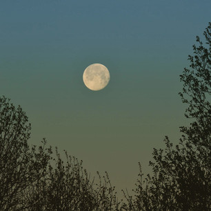 Full Moon Sundown