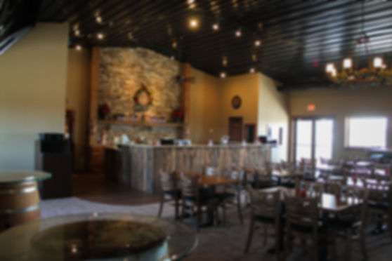 Ladoga Winery Winter-12.jpg
