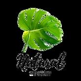 natrualwithmary-logo.png