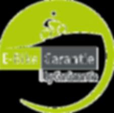 Logo_E-Bike_edited.png