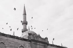 Istanbul F-22.jpg