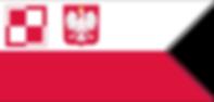 PAF Flag