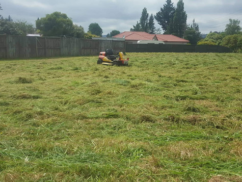 Long grass mowing after