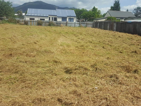 Overgrown section/Long grass mow after