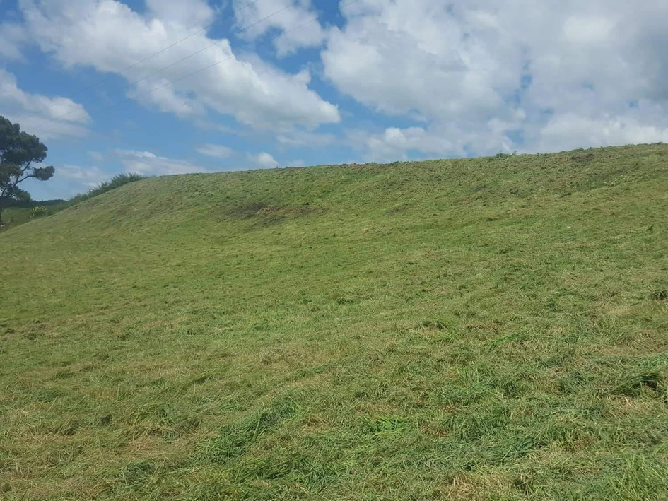 Long grass and steep slope mowing after