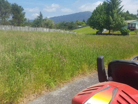Long grass mowing before