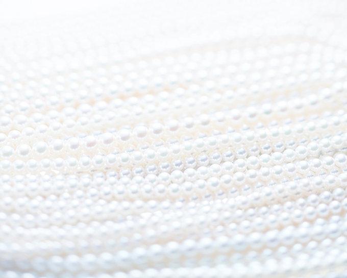 トップバナー真珠の連装_白.jpg