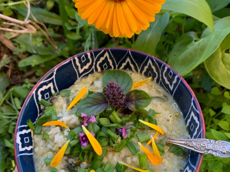 Japanese Seven Herb Porridge Inspired Dish