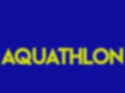 TM-Aquathlon.png