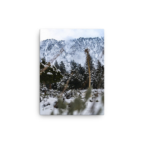 """Winter Wilderness"" Canvas Print"