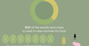 This shows how is meat-eating affecting the planet