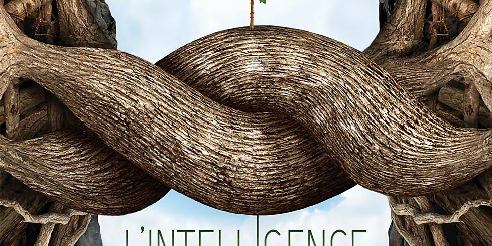 """Projection du film """"L'intelligence des Arbres"""""""