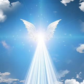 Everyone Needs an Angel