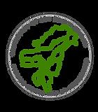CSS logo 1.png