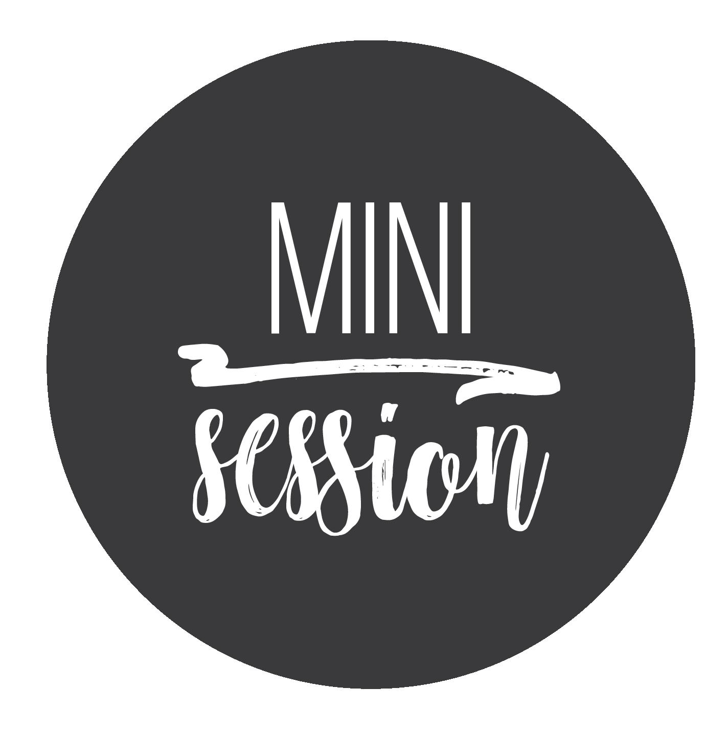 School Mini Session