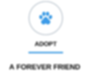 ADOPT A FOREVER FRIEND_edited.png