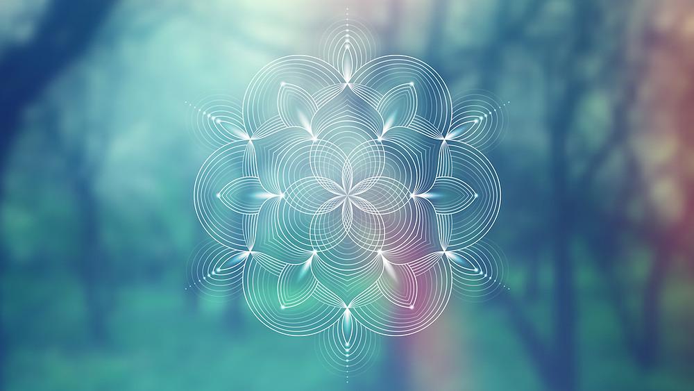 La cimática es una sección de los fenómenos modales vibratorios. El término fue acuñado por Hans Jenny (1904-1972), un investigador suizo seguidor de la escuela filosófica conocida como antropología.