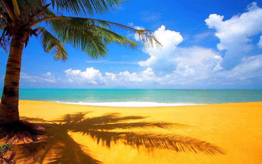 Golden-Beach-Wallpaper-2560x1600_edited.jpg