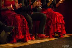 pies flamencos