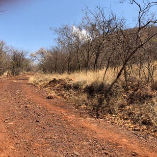 Hunting Area