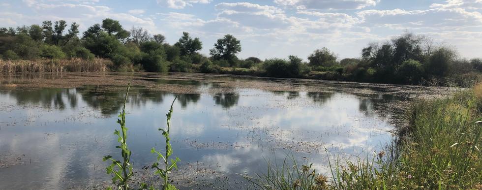 Wasserreiche Jagdgebiete von Horrido Safaris