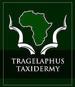 Taxidermy_Limpopo.jpg