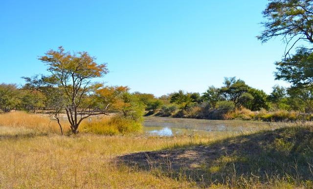 Jagdgebiet Horrido Safaris