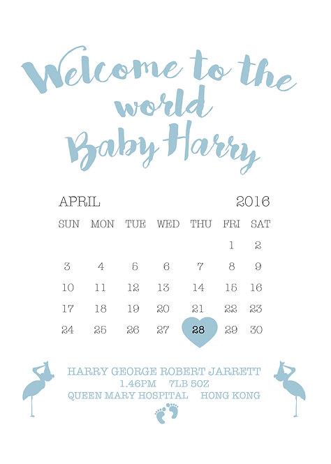 Baby Boy Calendar